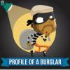 Profile Of A Burglar 2 E1415224234994